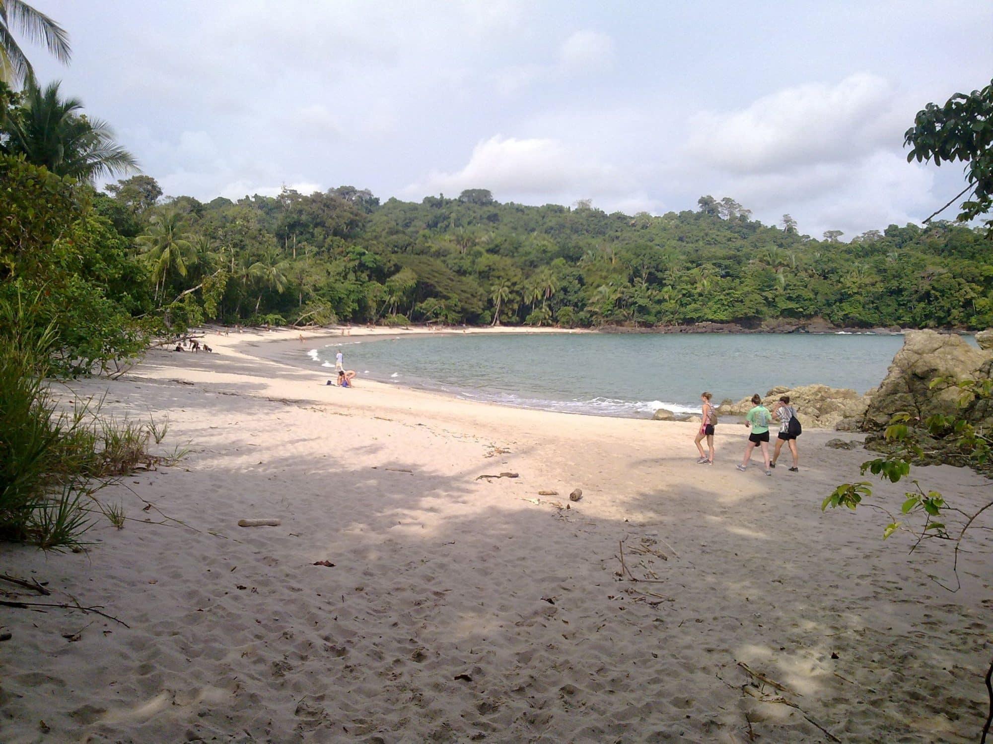Visite du Parc National de Manuel Antonio