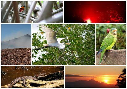 séjournez au Costa Rica