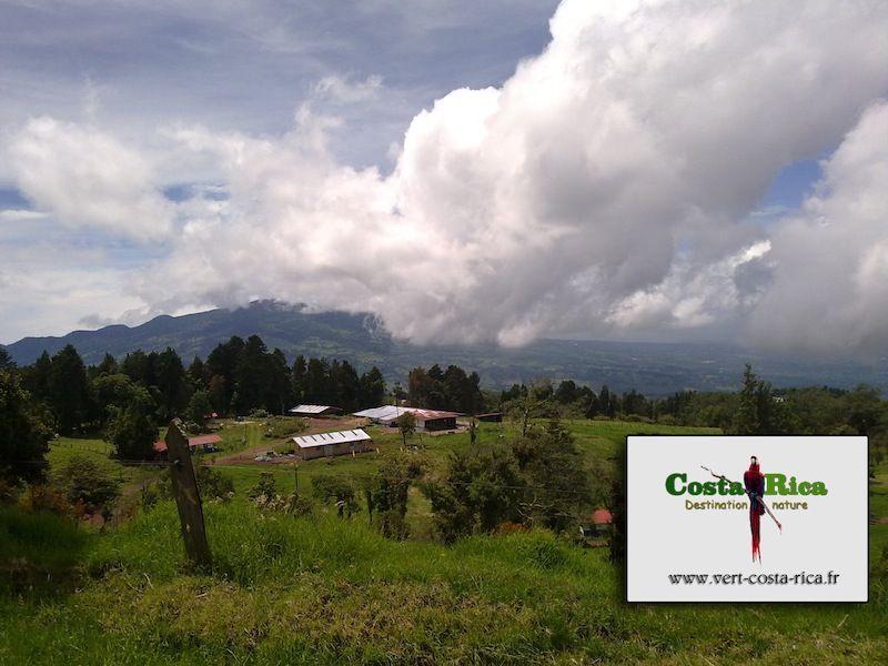Cadeau de Noël offert par Vert Costa Rica