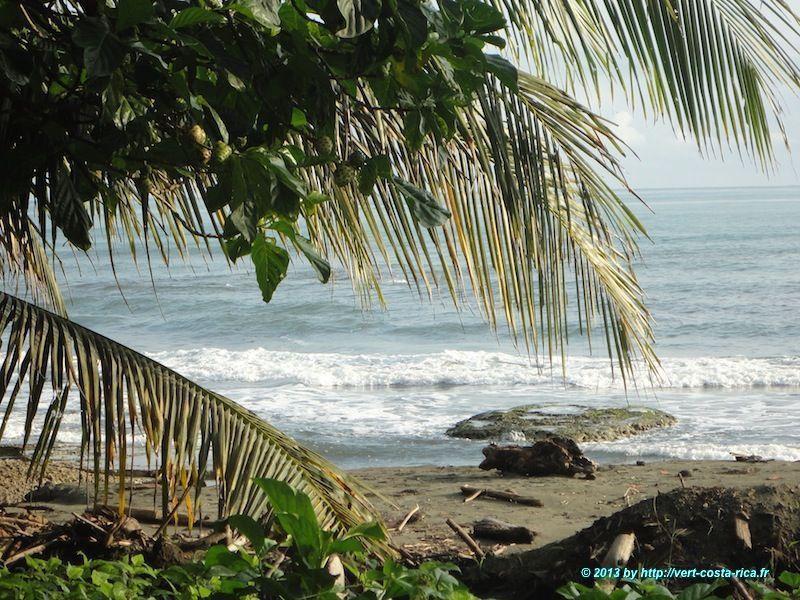 Plage de sable noir du village de Cahuita au Costa Rica