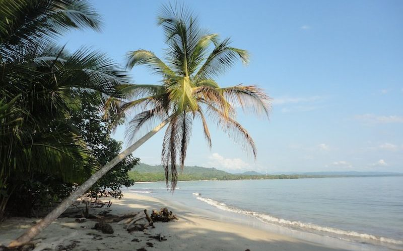 La grande plage de sable blanc de Cahuita au Costa Rica