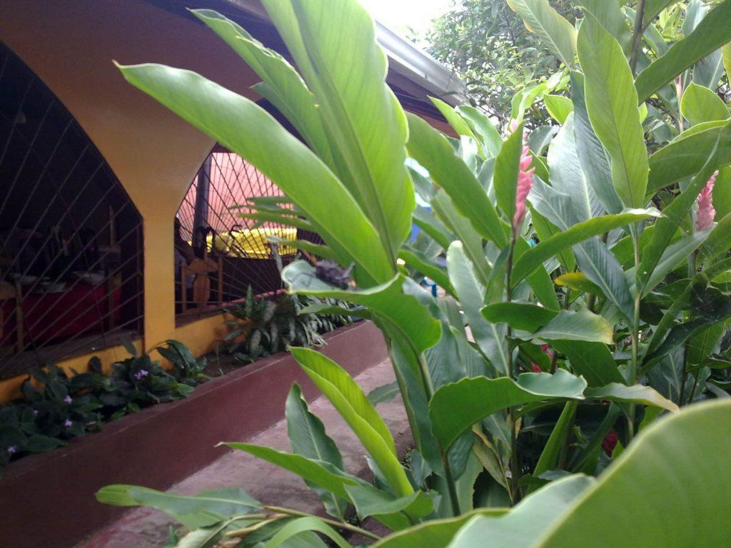 Hébergement Costa Rica