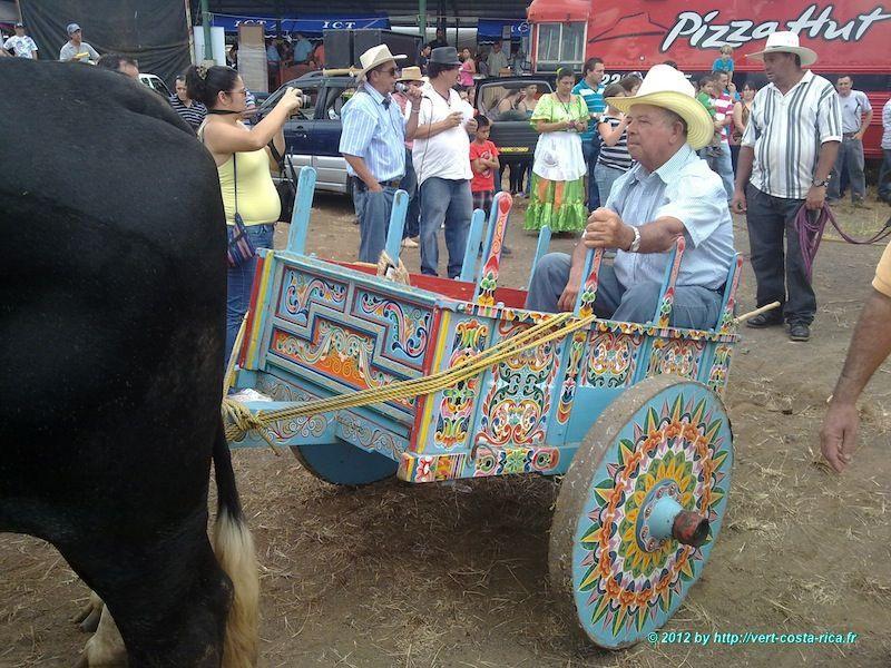 Défilé traditionnel de Charrettes à bœufs à Sarchi au Costa Rica
