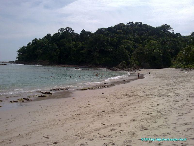 Visite et Plage dans le Parc National Manuel Antonio