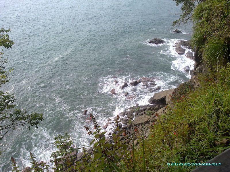 Image de la Nature dans le parc national de Manuel Antonio