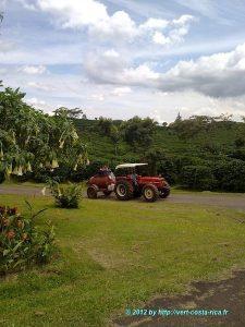 Tour de Café au Costa Rica en images - Vallée Centrale