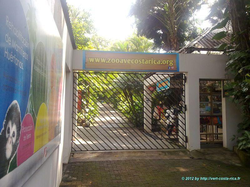 Visite du Zoo Ave et découverte des animaux du Costa Rica