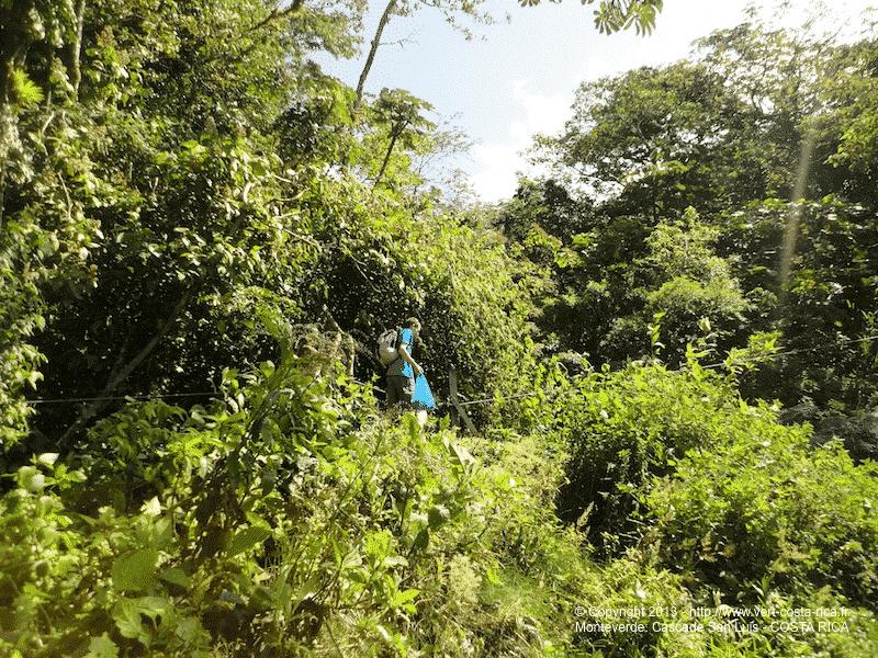 monteverde-cascade-san-luis_025