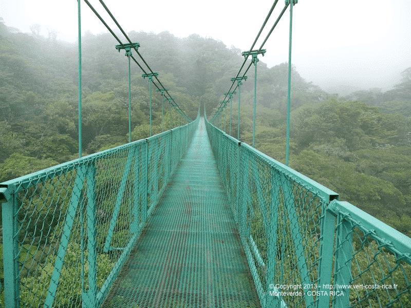 Monteverde : climat nuageux et la forêt tropicale humide de Monteverde