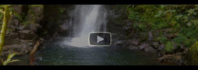 Monteverde en vidéo avec la Cascade San Luis