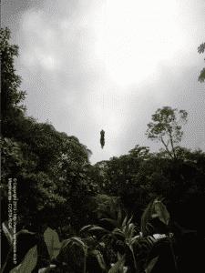 Canopy Tour de Monteverde
