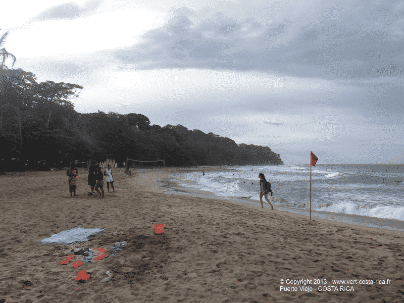 Plage Cocles de Puerto Viejo de Talamanca - Costa Rica