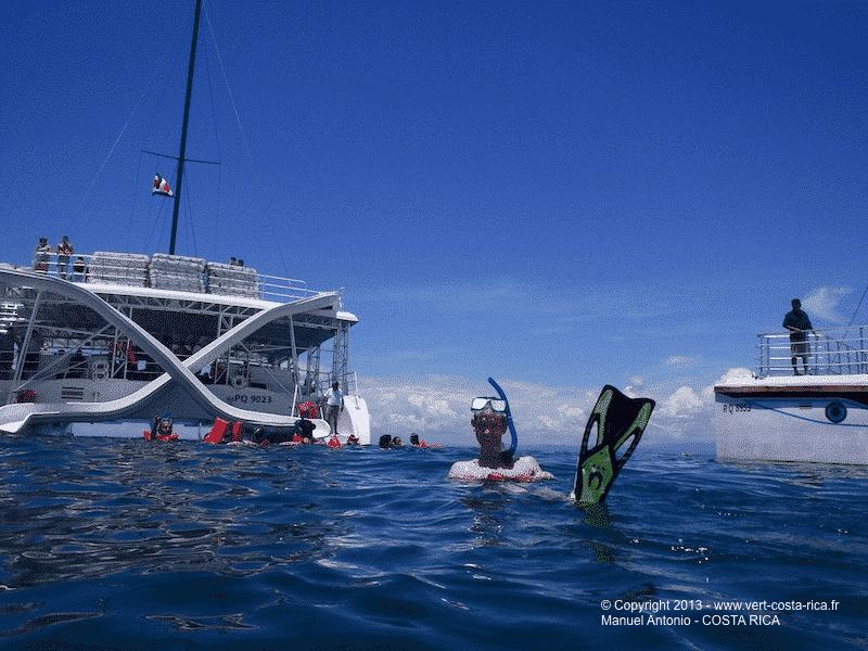Snorkeling en mer à Manuel Antonio