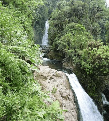 Cascades La Paz Waterfall Gardens