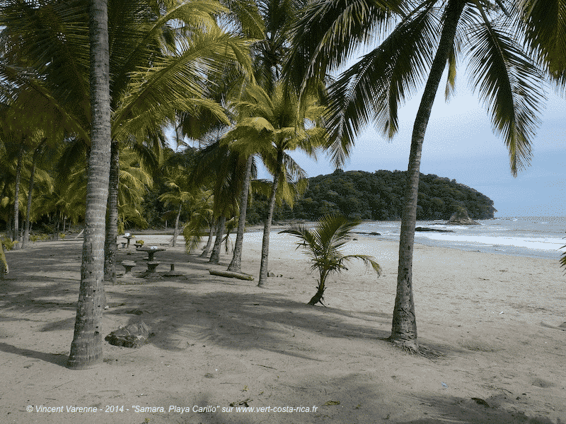 Images de Playa Carrillo, une plage à Samara