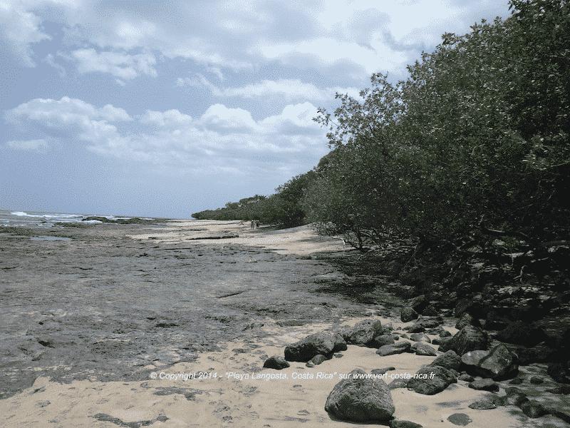 Playa Langosta à Tamarindo, Costa Rica - Tamarindo
