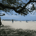 Village de Tamarindo, Playa Tamarindo - Costa Rica