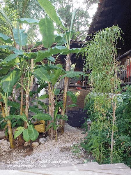 B&B Quinta Esencia à Brasilito dans le Guanacaste, Costa Rica