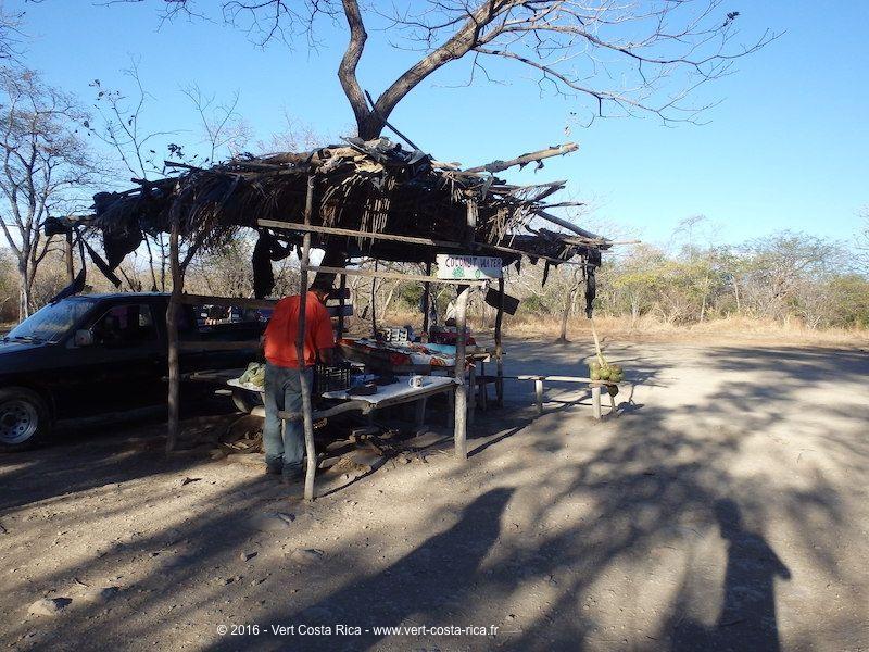 Cascade Llanos del Cortés, Bagaces