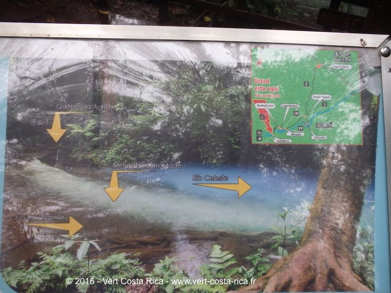Rio Celeste : río Buenavista et la Quebrada Agria