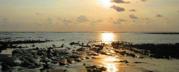 Puerto Jiménez ou Drake : Parc national Corcovado