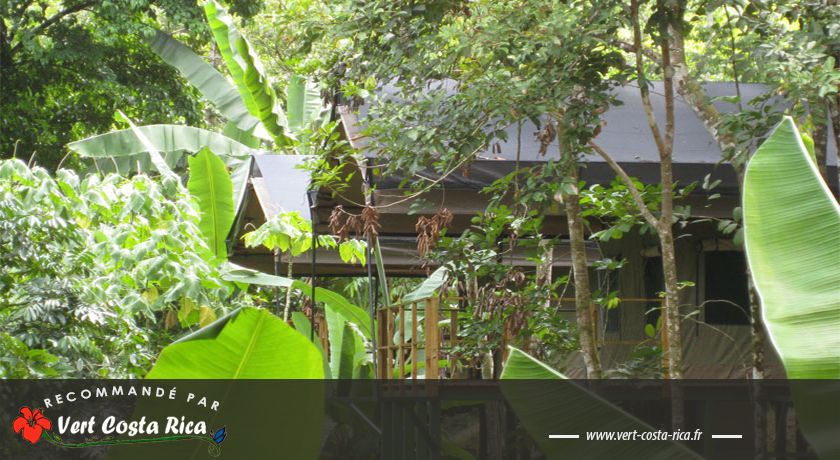 Rio Tico Safari Lodge : au cœur de la nature à Ojochal
