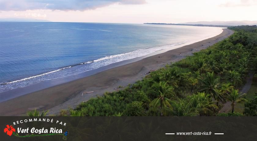 Punta Preciosa : Maison d'hôtes paradisiaque à Puerto Jimenez