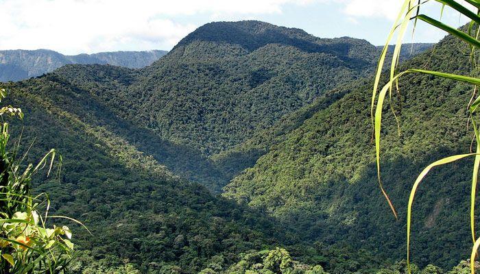 Braulio Carrillo : les parcs nationaux du Costa Rica