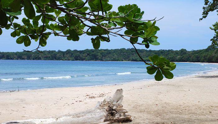 Cahuita : les parcs nationaux du Costa Rica
