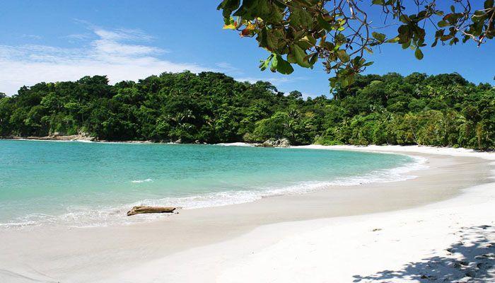 Manuel Antonio : les parcs nationaux du Costa Rica