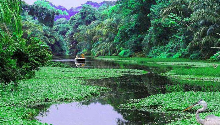 Tortuguero : les parcs nationaux du Costa Rica
