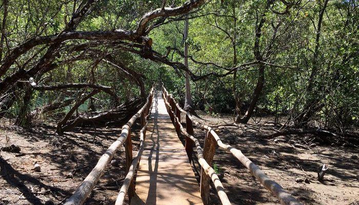 Réserve naturelle de Curú : réserves et refuges biologiques du Costa Rica