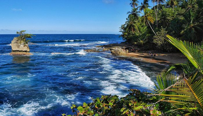 Refuge national de Gandoca-Manzanillo : réserves et refuges biologiques du Costa Rica