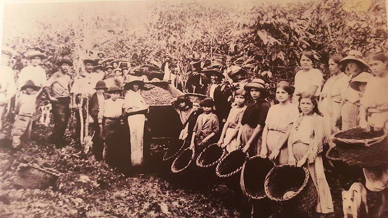 Découvrons la communauté des Ngöbes, les indigènes les plus au sud du Costa Rica