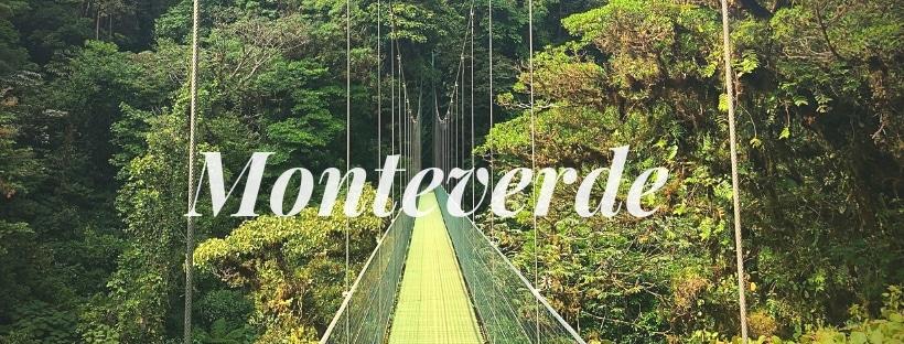 Hôtels au Costa Rica : nos hôtels coups de cœur pour Monteverde