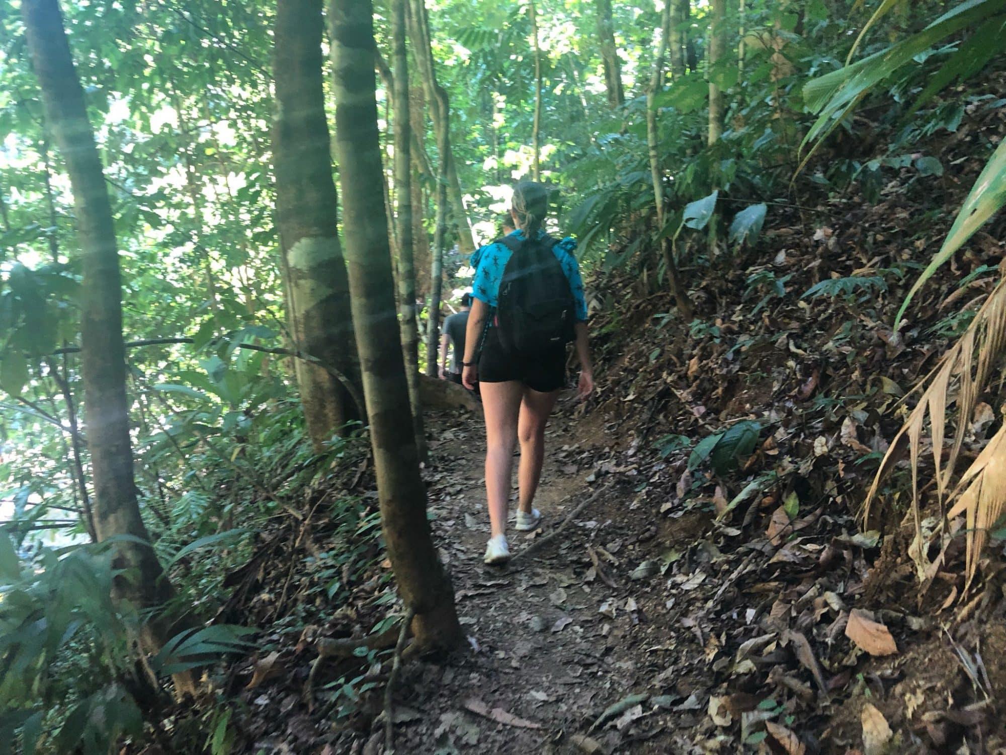 randonnée-corcovado-service-vertcostarica
