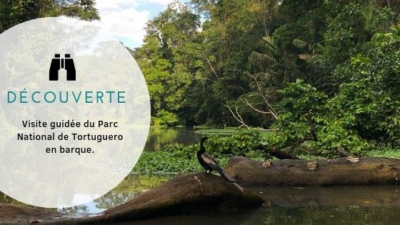 Parc national Tortuguero vertcostarica