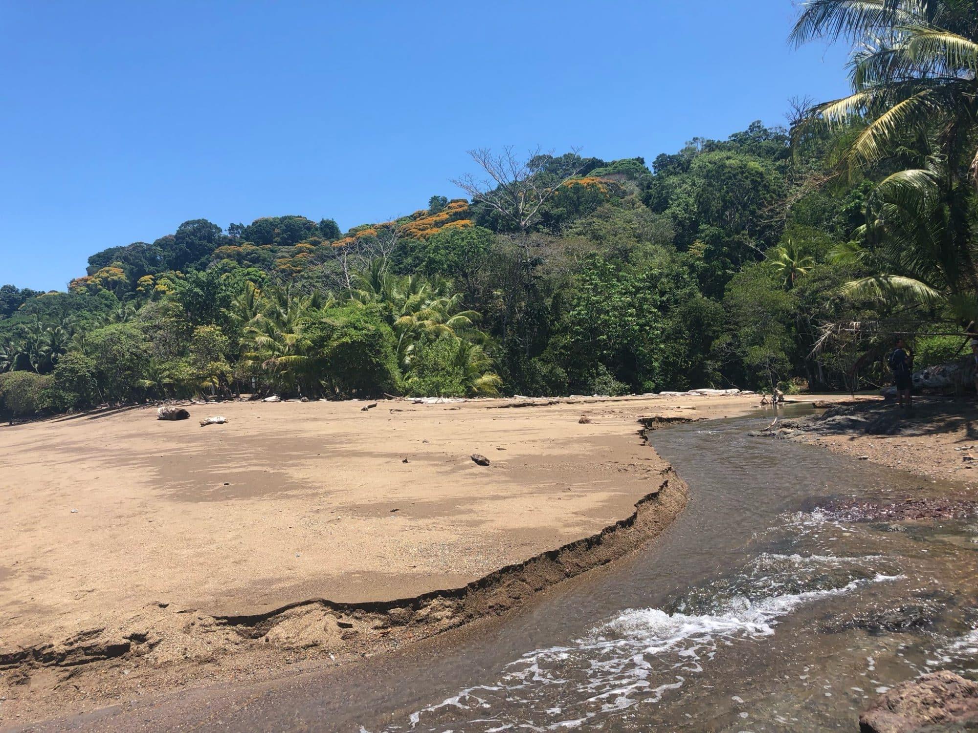 vert-costa-rica-corcovado