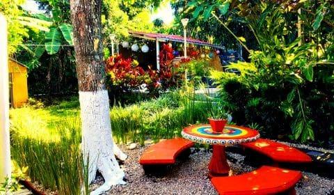 Jardin de l'hôtel Brilla Sol au Costa Rica