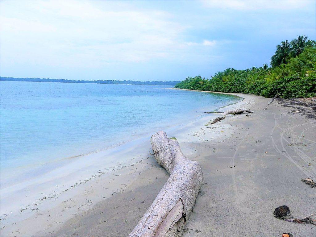 Découvrez les étoiles de mer sur la paradisiaque Playa Estrella