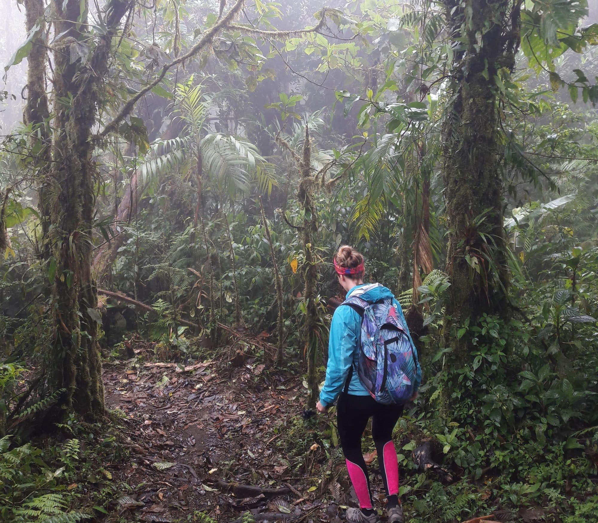 monteverde_09-vert-costa-rica