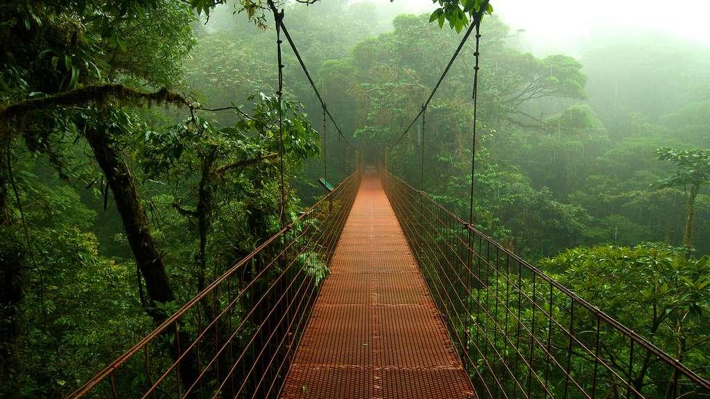 Ponts suspendus au Costa Rica