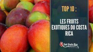 Les fruits exotiques du Costa Rica