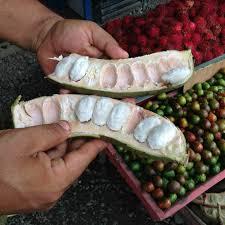 Guaba du Costa Rica