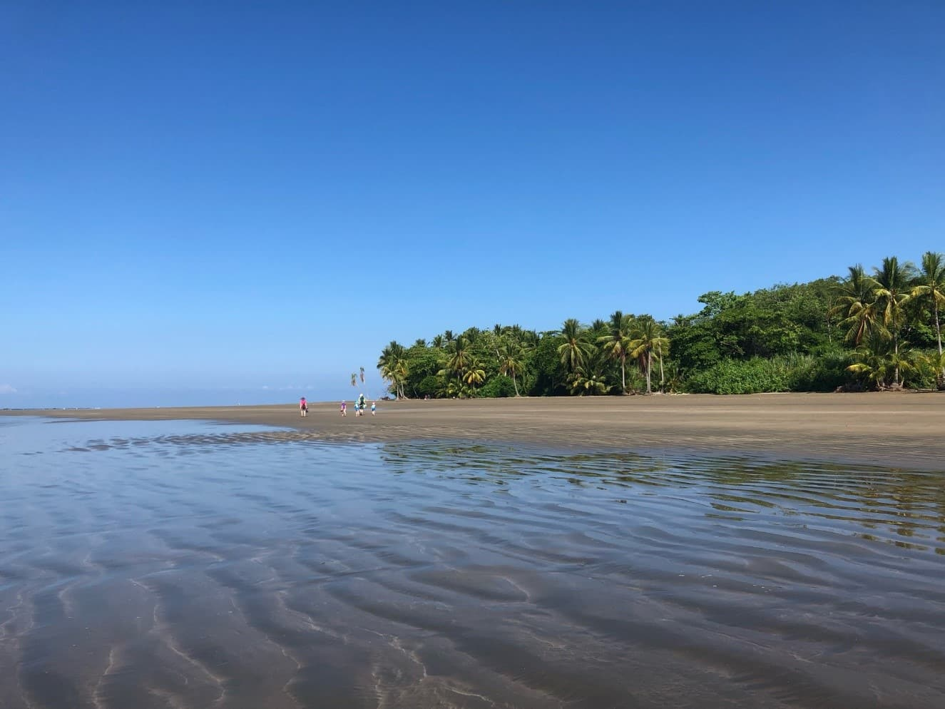 Plage Marino Ballena au Costa Rica