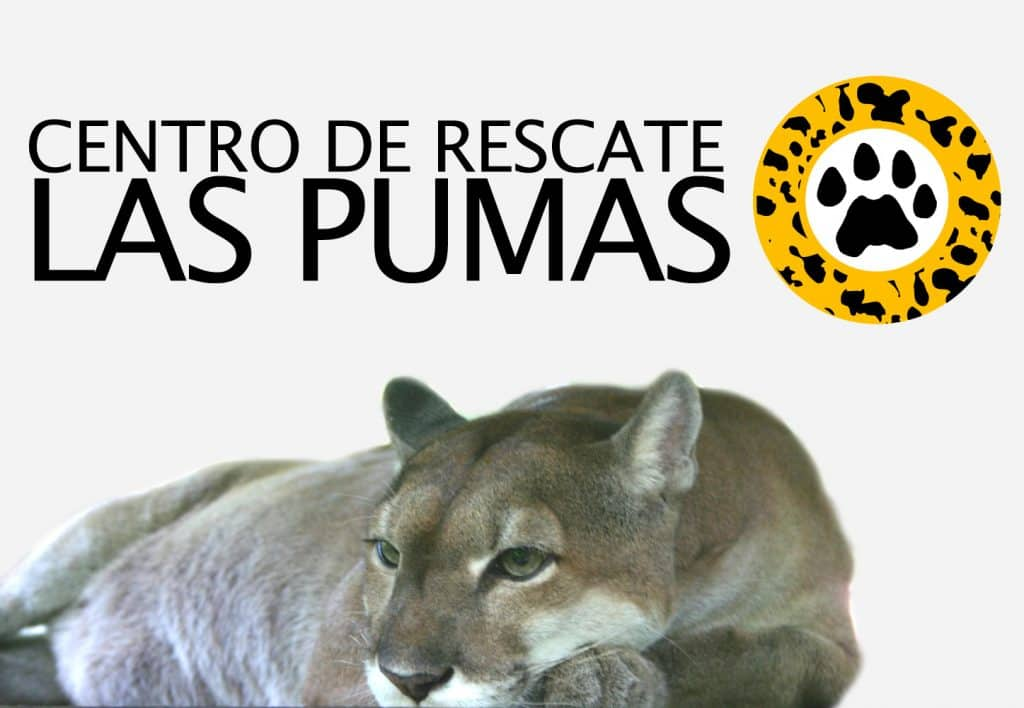 Rescue Center au Costa Rica : les centres de sauvetage des animaux au Costa Rica
