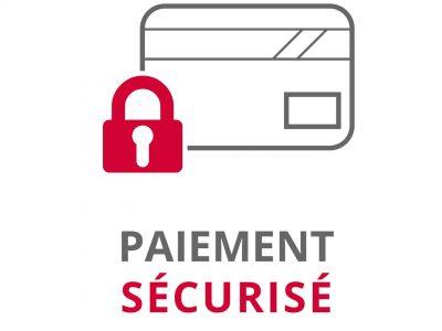 paiement-sécurisé-service-changement-devise-enligne-vertcostarica